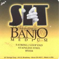 SIT Banjo Strings Medium B51024 5 string 10-24